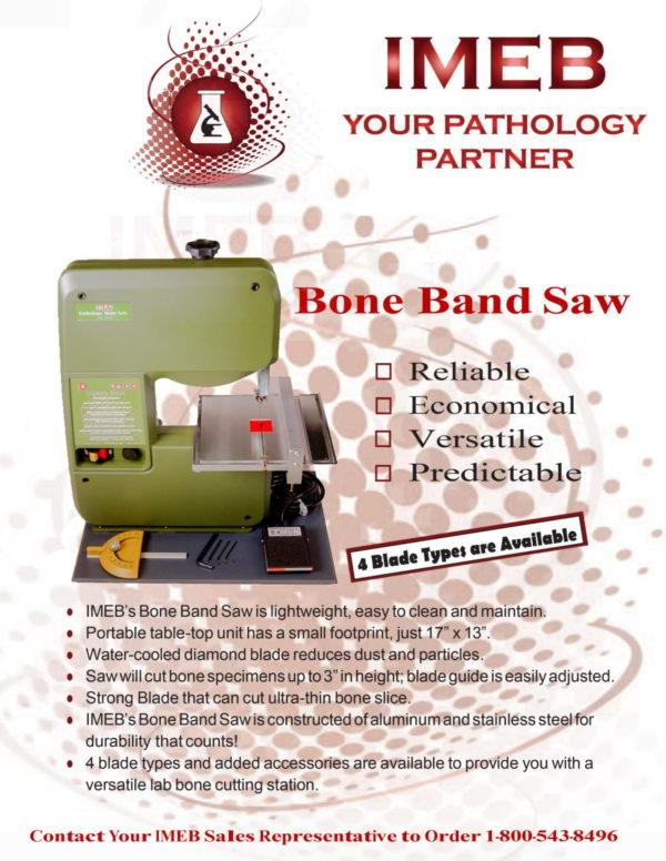 Pathology Bone Band Saw